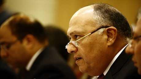 وزير الخارجية المصري سامح شكري (صورة من الأرشيف)