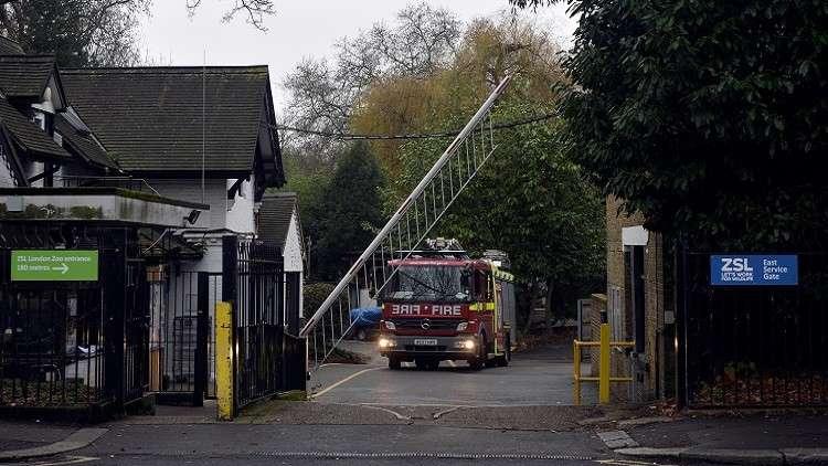 مصرع شخص بحريق داخل مبنى سكني في لندن