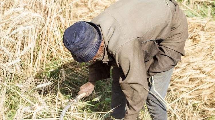 مصر ترشد استهلاك المياه بـ900 مليار جنيه