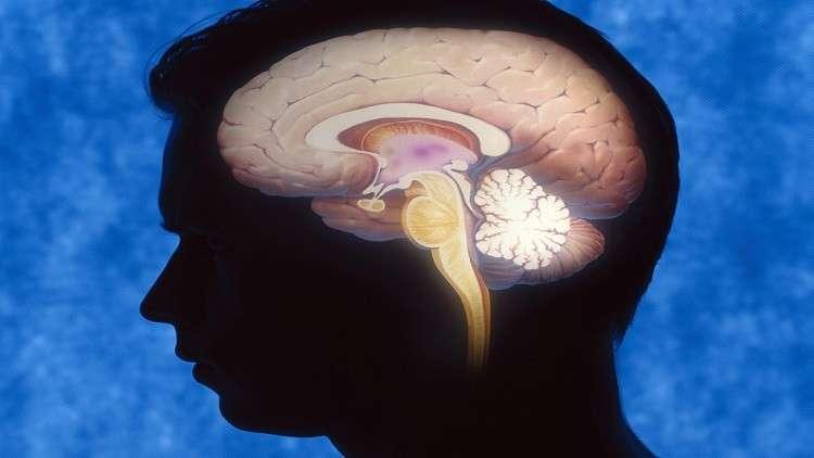 الدماغ البشري يصاب بالشيخوخة بدءا من سن الـ25