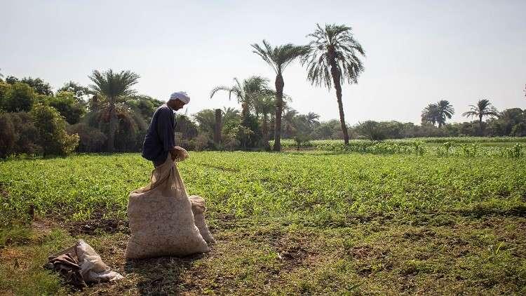 مصر تستعد لإنشاء أكبر مدينة صناعية في الفيوم