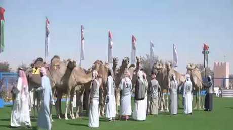 فعاليات مهرجان سلطان بن زايد التراثي