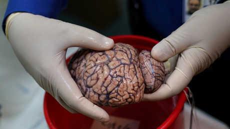 ابتكار غرسة لتحفيز الدماغ
