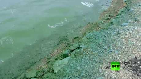 مدينة روسية تتحول ألوان مياهها إلى الخضرة!