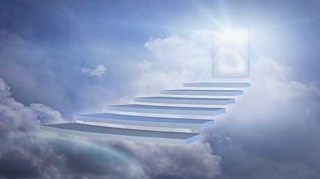 الحياة بعد الموت .. هل تستمر جيناتنا بالعمل رغم الوفاة؟