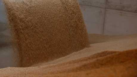 السعودية تطرح مناقصة لشراء مليون طن من الشعير