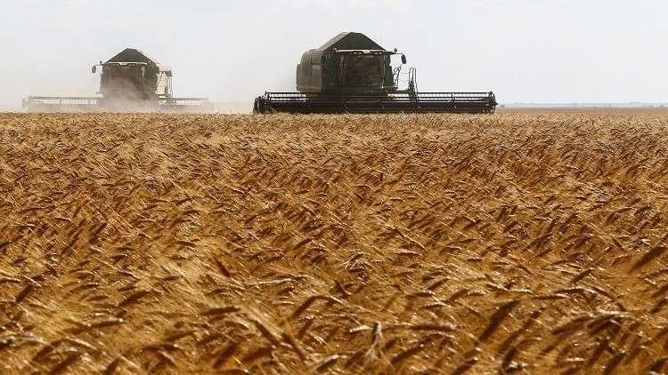 تركيا وقطر تزرعان القمح السوري!