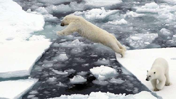 تسجيل أدنى مساحة لجليد القطب الشمالي