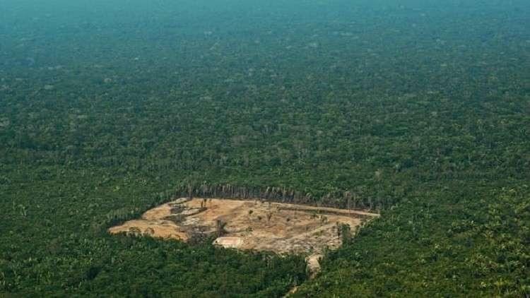 العثور على العالم المفقود في قلب غابات الأمازون المطيرة