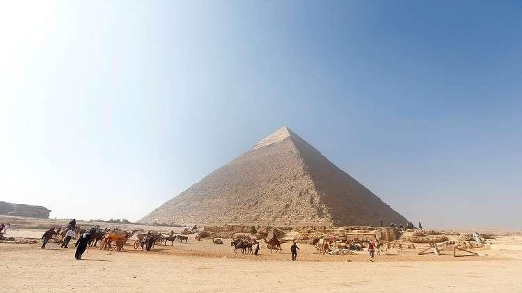 مصر.. عودة الذهب الأبيض المصري إلى الأسواق العالمية