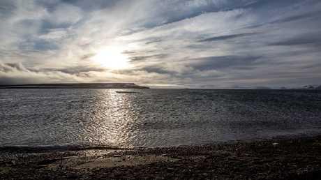 نقص الأكسجين في مياه البحار سيؤدي إلى كارثة