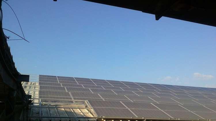 السعودية ستقود ثورة الطاقة الشمسية