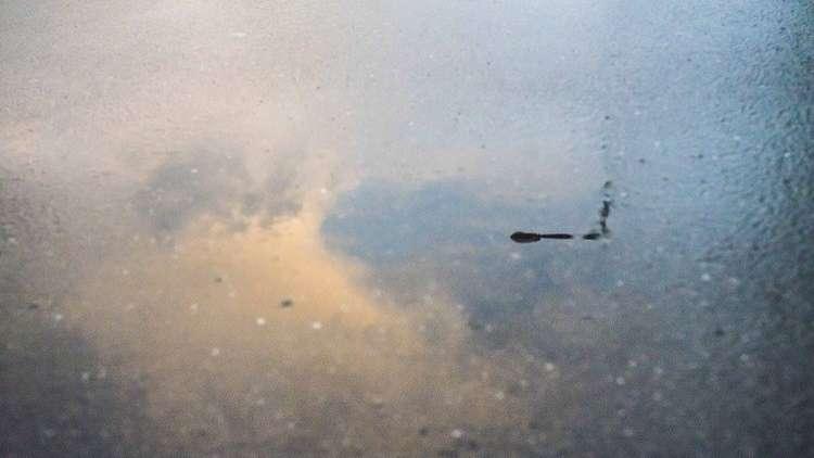 ضواحي القاهرة الراقية تغرق في مياه الأمطار (فيديو)