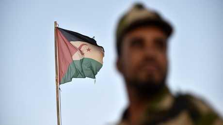 مقاتل أمام علم جبهة البوليساريو في الصحراء الغربية