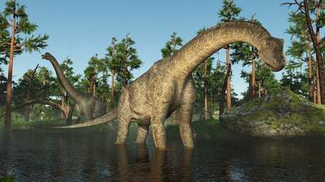 اكتشاف آثار أقدام أكبر ديناصورات العالم!
