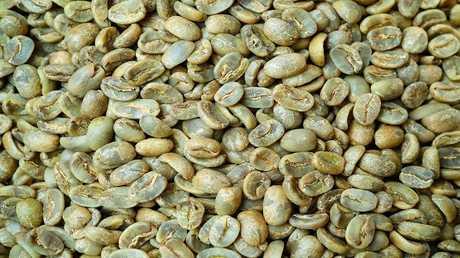 القهوة الخضراء - حارقة الدهون