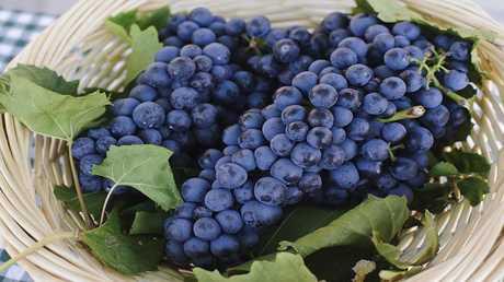 العنب وبذوره فعال في مكافحة السرطان