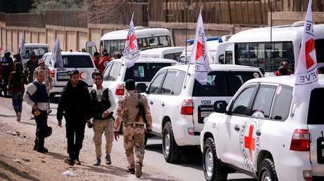 مسؤولة هولندية تطالب حكومة بلادها بإعادة أبناء المسلحين من سوريا