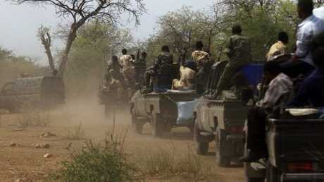 جماعات مسلحة في دارفور بالسودان - أرشيف