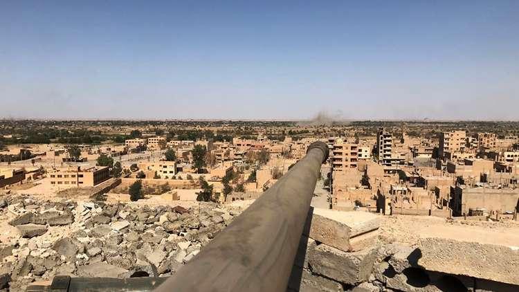 وزير الخارجية المصري يعلق على فكرة إحلال قوات عربية في سوريا