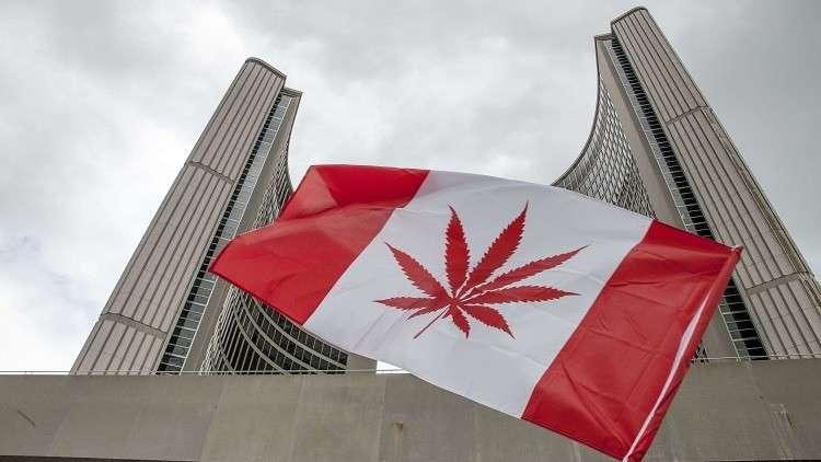 كندا بصدد شرعنة الماريخوانا هذا العام
