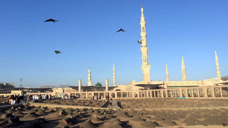 فضيحة فساد تطال قادة شركة الكهرباء السعودية في المدينة المنورة