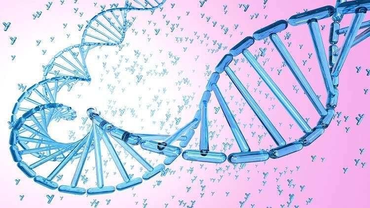 اكتشاف جين ذكوري يحمي من الشكل العدواني للّوكيميا