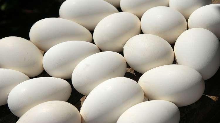 كم بيضة يمكن لمريض السكري تناولها في اليوم؟