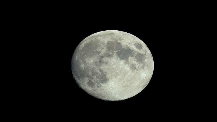 50 طلبا من دول مختلفة للالتحاق برحلة القمر
