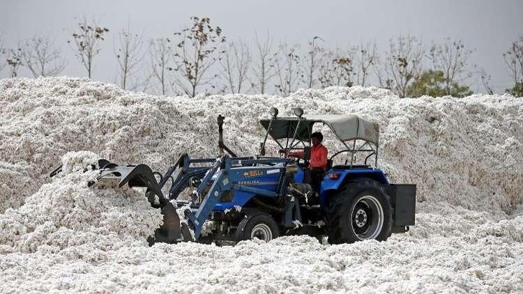 الولايات المتحدة تحظر استيراد القطن من تركمانستان