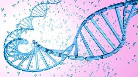 اكتشاف جين ذكوري يحمي من الشكل العدواني لللوكيميا