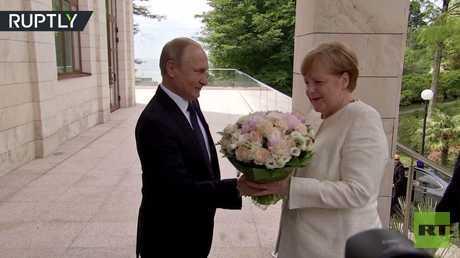 شاهد.. بوتين يستقبل ميركل بباقة أنيقة من الزهور