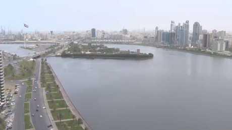 موقف أبو ظبي في تطورات الميدان اليمني