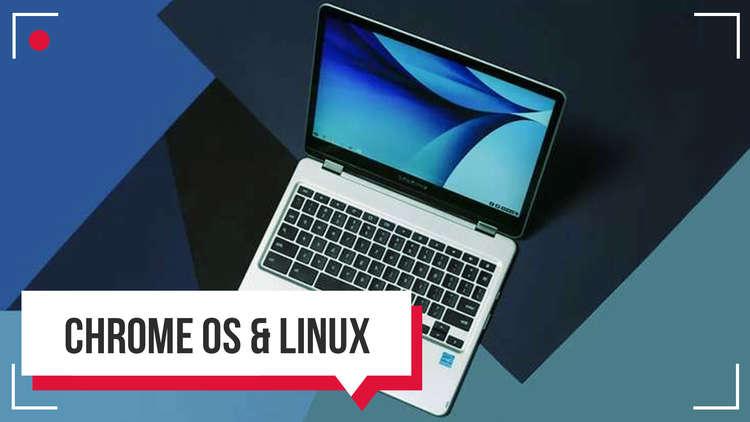 كمبيوتر Chromebook Plus من سامسونج
