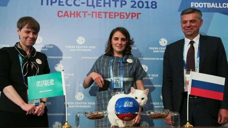 قط أصم يختار الفائز في مباراة روسيا والسعودية
