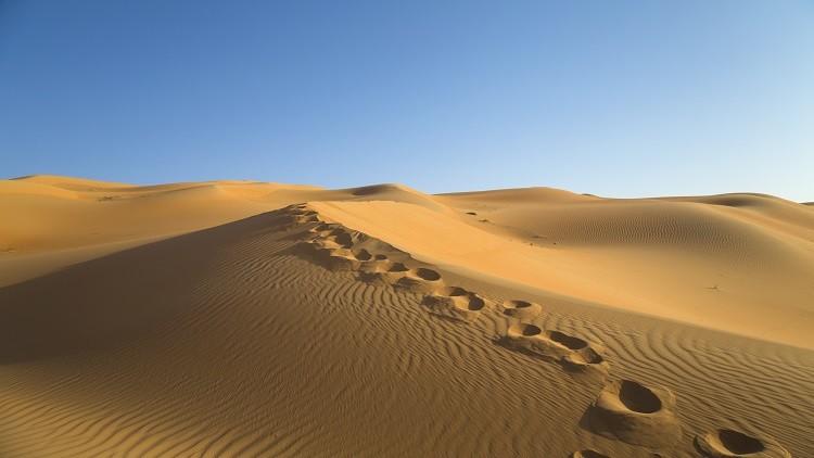 صحراء الربع الخالي pdf