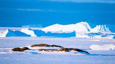 ارتفاع القاعدة الصخرية لأنتاركتيكا يبطئ