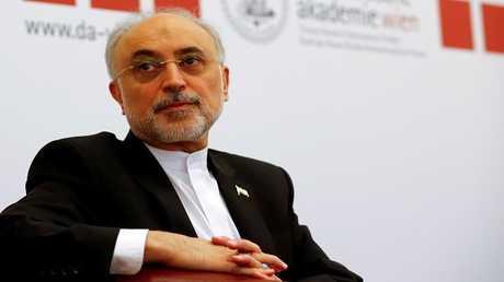 رئيس منظمة الطاقة الذرية الإيرانية علي أكبر صالحي