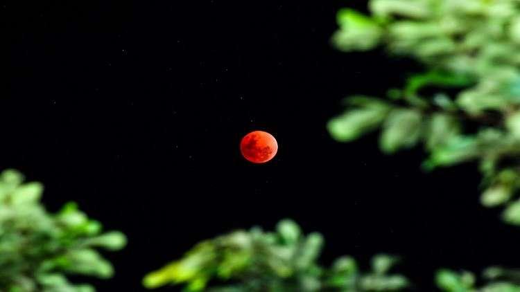 القمر الدموي الأرض تزامنا ظاهرة