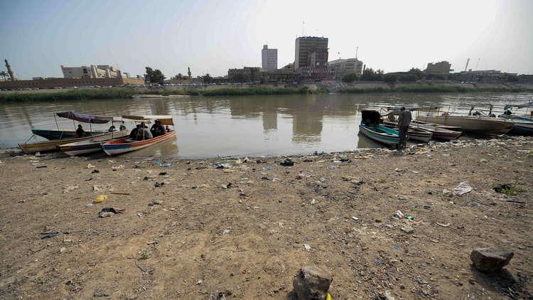 شح وملوحة المياه تتسبب بنفوق الحيوانات في جنوب العراق