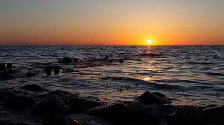 العلماء يتوقعون كارثة بيئية في بحر البلطيق