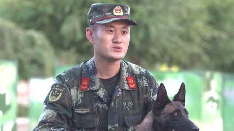 الأميرة... كلبة تحظى بشهرة كبيرة بالصين