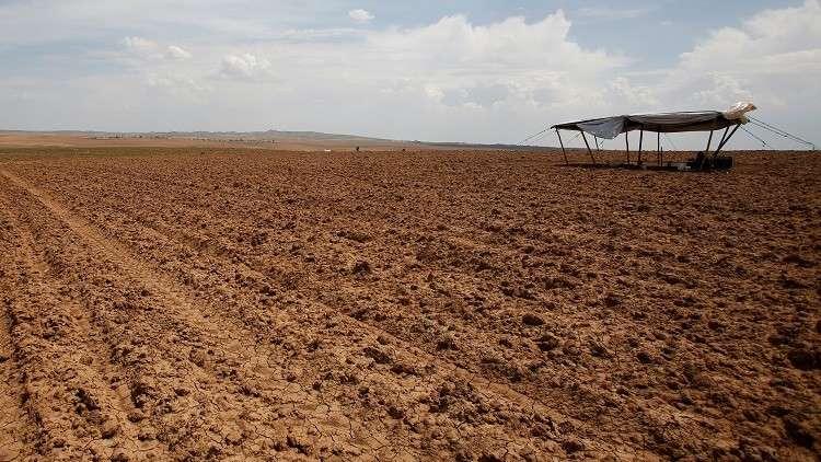 العراق يفقد نصف مساحاته الزراعية بسبب الجفاف