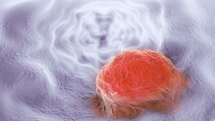 أكثر السموم فتكا قد يكون مفتاح القضاء على أخطر السرطانات