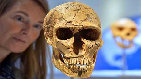اكتشاف سبب جديد لانقراض الإنسان القديم