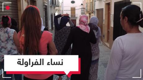 حقول الفراولة الإسبانية.. كابوس العاملات المغربيات