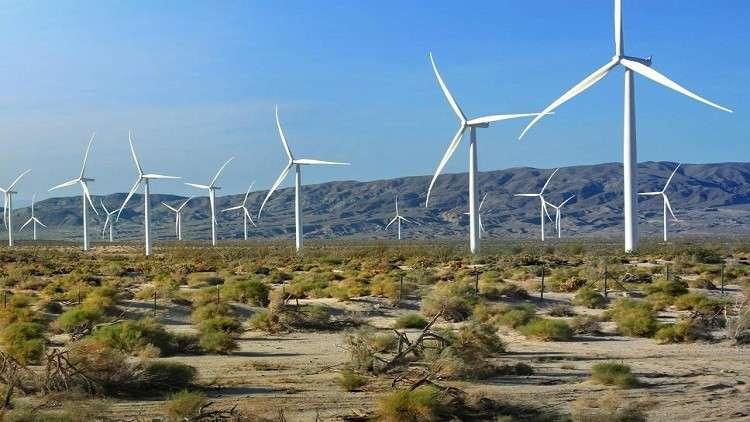 هل تتحول الصحراء الكبرى إلى أرض خضراء؟