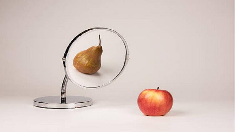 أجسام الإجاصة تحمينا من خطر يحدق بأجسام التفاحة