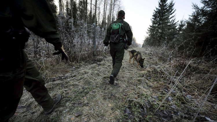 فنلندا بصدد إنشاء سياج على حدودها مع روسيا