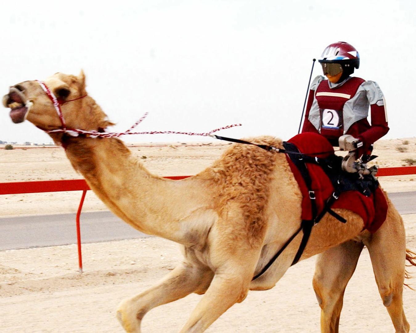 اختراع قطري في موسوعة